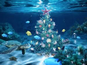 sea-christmas