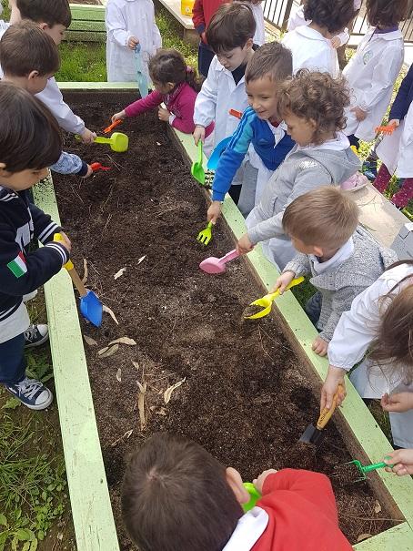 preparazione del terreno (2)