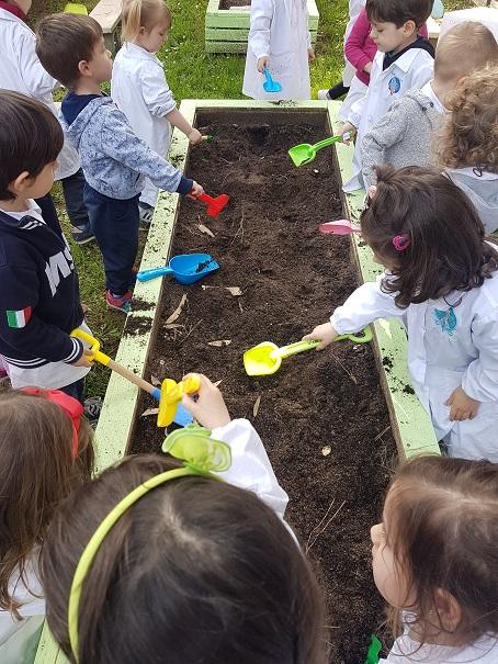 preparazione del terreno (3)