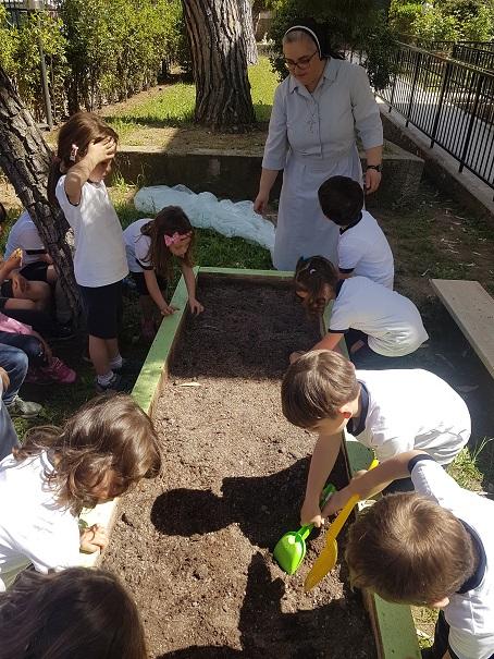 pulizia del terreno (2)
